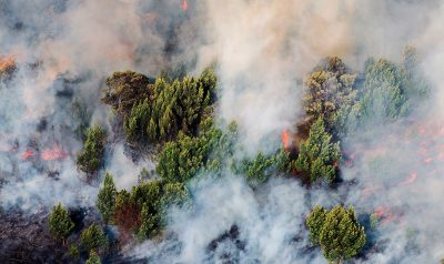 A forest fire rips through Sumatra. Unfettered forest clearing and peatland draining to make way for palm oil and pulp and paper plantations are considered to be the main cause of Indonesia's agricultural fires. Photo/Muhammadiyah