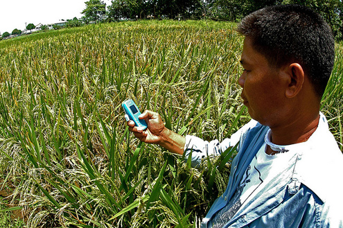 Farmer in the Philippines uses a mobile phone