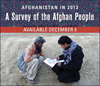 2013 Afghan Survey