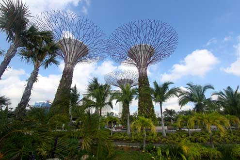 "There are few densely populated cities in the world today that can claim a better record of integrating natural environments into the urban experience than Singapore's ""City in the Garden"" model. Photo/Flickr user Jamie Carter http://bit.ly/1l3OUr8"
